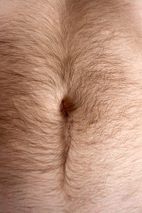 bellyhair